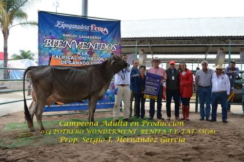 034 Campeona Adulta en Produccion 328